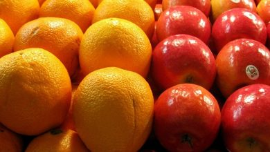 Photo of Comparing apples and oranges