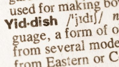 Photo of The Yiddish Handbook: 40 Words You Should Know