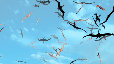 Photo of Pterosaurs – The Flying Reptiles